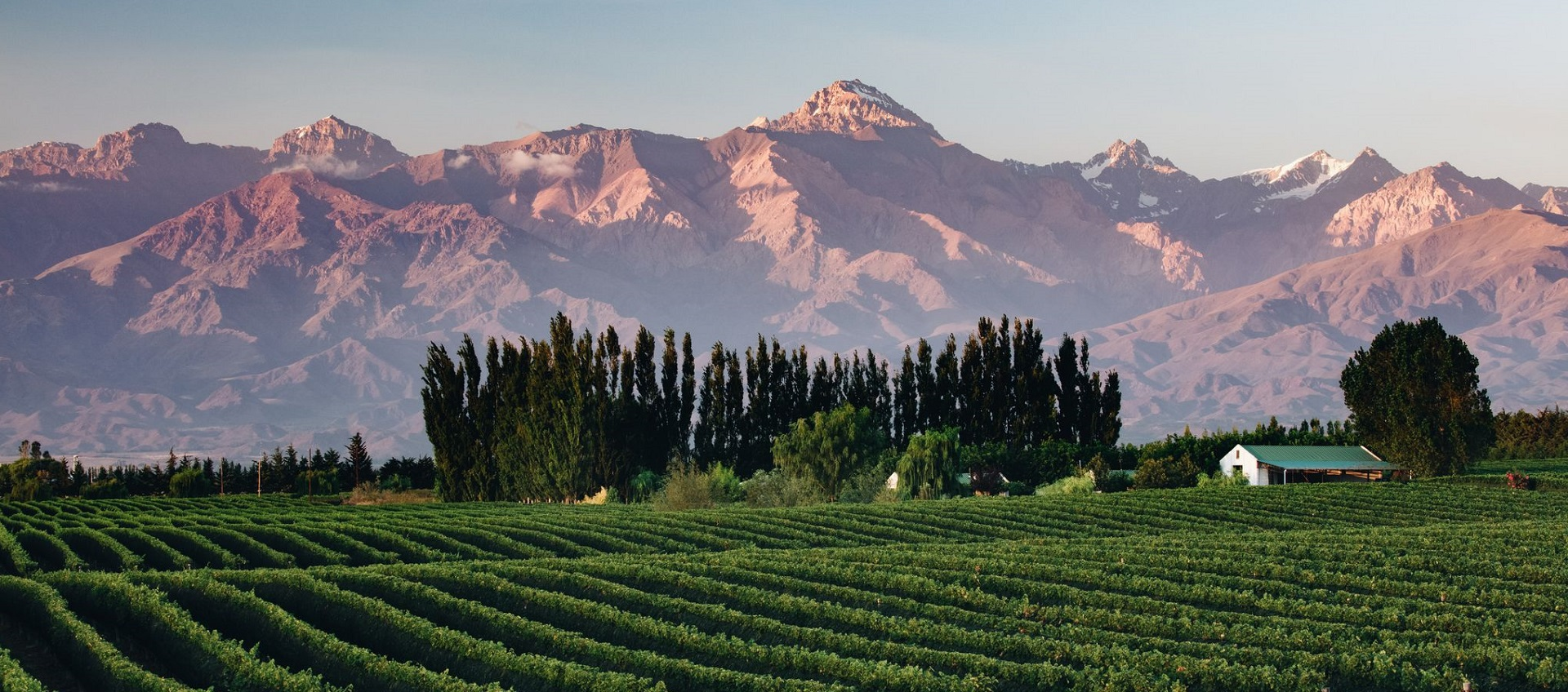 Argentina With Chateau Montelena